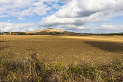 Thick cumulus clouds of summer lie over a wide dry field in Tuscany Italy Royalty Free Stock Image