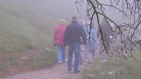 Thick fog covers forest landscape. Summer. Silhouettes of people stock video