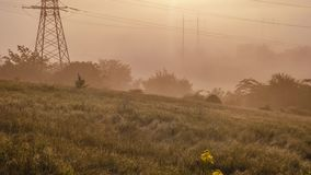 Thick fog on a green meadow, on the background of the power lines. Time lapse. Time lapse of dense fog on a meadow where trees, bushes and field grass grow on a stock footage