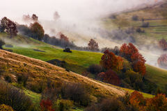 Thick fog on hilly rural fields in autumn. Overwhelming countryside weather at sunrise Stock Photos