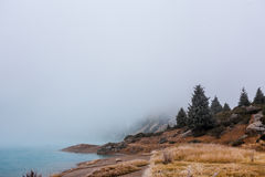 Thick fog Royalty Free Stock Photo