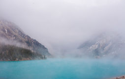 Thick fog Stock Photography