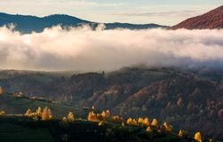 Thick fog over the hill in autumn mountains Royalty Free Stock Photo
