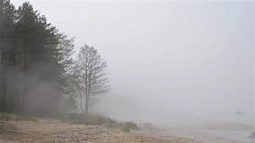 Thick fog spread on sandy beach of Finnish gulf