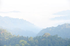 Thick fog in the valley Royalty Free Stock Photography