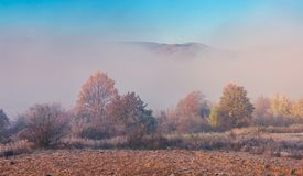 Thick fog in the valley. Trees in fall foliage. top of the mountain seen in the distance royalty free stock photo