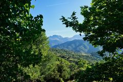 Thick Forests on Greek Mountains, Greece royalty free stock image
