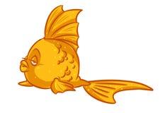 Thick goldfish cartoon Royalty Free Stock Image
