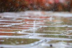 Raindrops Splattering on Pool Deck Tiles. Thick, heavy raindrops splatter on the tiles of a pool deck in a warm, humid afternoon in late June in Florida Stock Photos