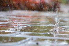 Raindrops Splattering on Pool Deck Tiles Royalty Free Stock Images