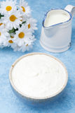 Thick homemade natural yoghurt and milk, top view Royalty Free Stock Photography