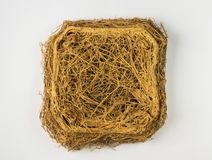Thick interlacing of roots Royalty Free Stock Images