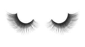 Thick and long false eyelashes Royalty Free Stock Images