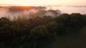 Thick morning fog over the river and meadow. Flying over the mist landscape stock video footage