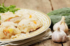 Thick noodles and vegetables Stock Images