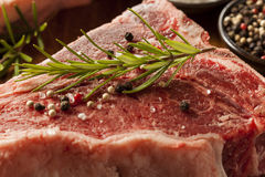 Thick Raw T-Bone Steak Stock Image
