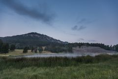 Thick Reeds Surround Foggy Pond. The Lamar Valley of Yellowstone National Park Stock Photos