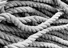 Thick rope in grass Royalty Free Stock Photo