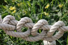 Thick rope with many knots. Ideas and concepts: Thick rope with many knots stock image
