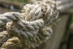 Thick and rough rope Royalty Free Stock Images