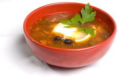 Thick Russian Soup Royalty Free Stock Photos