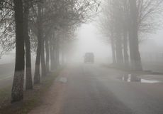 Thick shroud of fog in late autumn Stock Photo