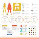 Thick slim body set icon info graphic Royalty Free Stock Images