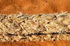 Thick synthetic rope and sea sand on background Stock Photo