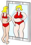 Thick and thin woman. Vector illustration of a thick thin woman looks in the mirror royalty free illustration