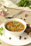 Thick vegetable soup with mushrooms Royalty Free Stock Images