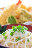 Thick white noodles with grated radish Royalty Free Stock Photos