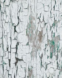 Thick white peeling cracked paint with green underneath. On an old outbuilding on a farm Stock Images