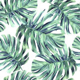 Thicket leaves monster seamless pattern royalty free illustration