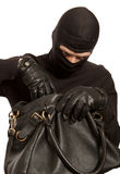 Thief stealing money Stock Images