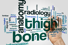 Thigh bone word cloud. Concept on grey background royalty free stock images