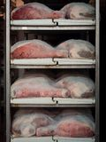 Raw ham during the salting process inside a refrigeration cell. Thighs of ham during the salting process inside a refrigeration cell Stock Photography