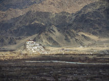 Thiksey-Kloster in Leh, Indien Blume im Schnee lizenzfreies stockbild