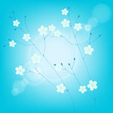 Thin branches with white flowers Royalty Free Stock Photo