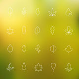 Thin contour icons leaves Royalty Free Stock Photos