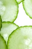 Thin cucumber slices Stock Image