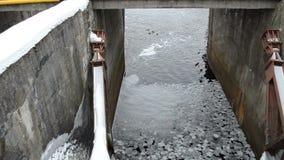 Thin ice floe float water surface winter retro dam ducks swim stock footage