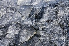 Thin ice shards. Shards of thin ice on a beach in Southeast Alaska in winter close up Stock Photos