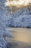 Thin Ice in Winter Stock Images