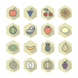 Thin Line Icons For Fruits. Vector eps10 Stock Images