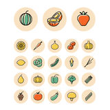 Thin line icons for fruits and vegetables. Vector illustration Stock Photo