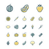 Thin line icons for fruits and vegetables. Vector illustration Royalty Free Stock Photo