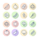 Thin Line Icons For Vegetables Stock Photography