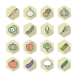 Thin Line Icons For Vegetables Stock Photo