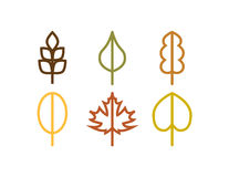 Thin line vector autumn tree leaf icons. Thin line vector tree leaf icons set Royalty Free Stock Images