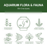 Thin line vector icons - aquarium flora and fauna. Outline isolated signs of fish and plants for fish tank Stock Photography
